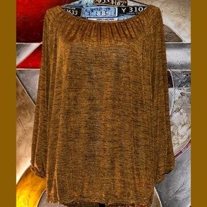 Sparkly Gold/Brown Pullover Long Sleeves